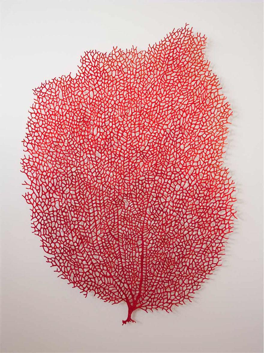 Artista borda las formas más bonitas de la naturaleza 4